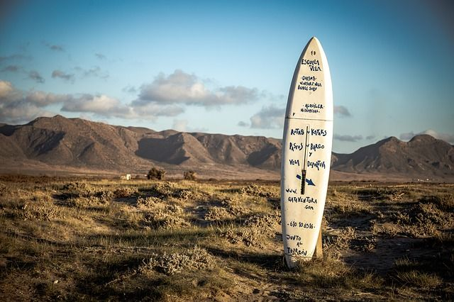 como elegir tabla surf