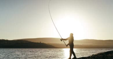 las mejores cañas de pescar
