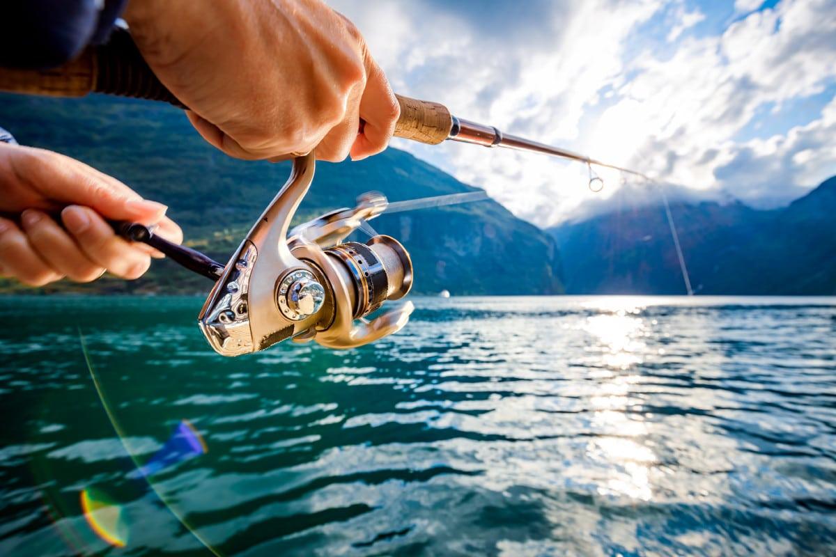grasa para carrete de pesca